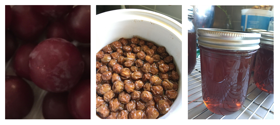 Plum preserving process in the crock pot.