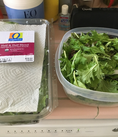 Salad greens should have space for air to flow, but also include a paper towel to absorb any extra moisture before sealing and putting in fridge.