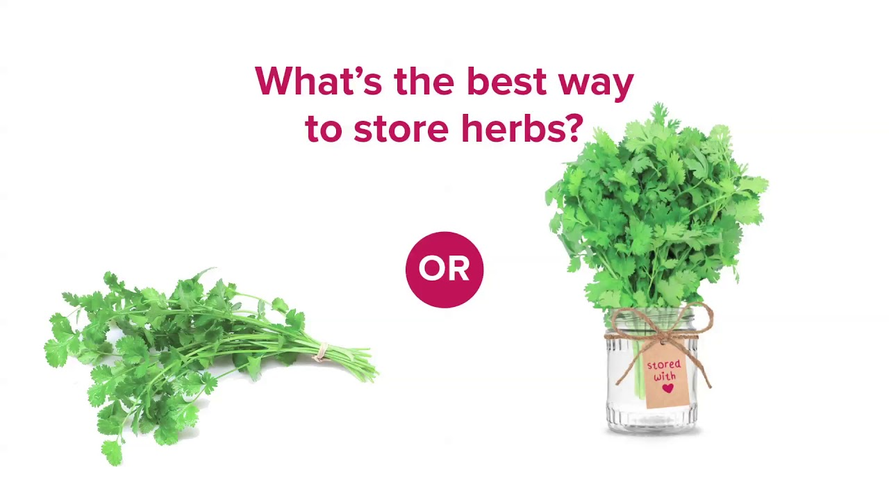 Embedded thumbnail for What's the Best Way to Store Fresh Herbs?