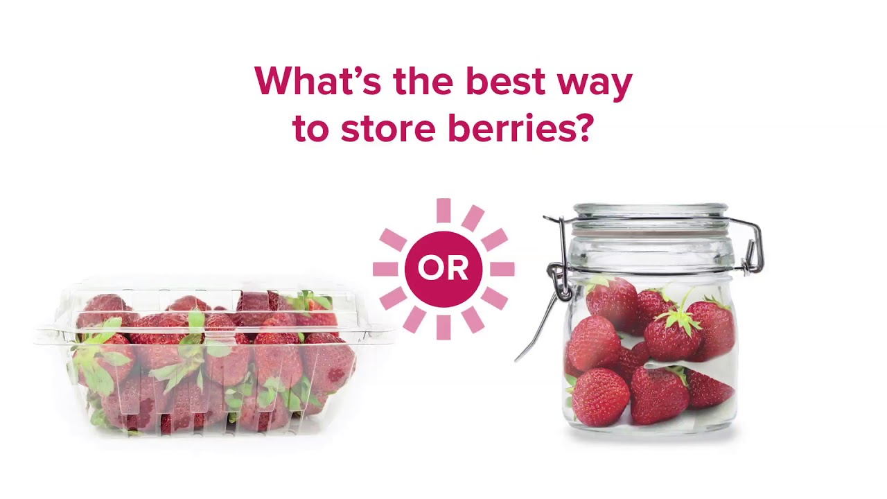 Embedded thumbnail for What's the Best Way to Store Berries?